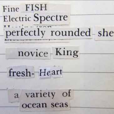blog fishking 2 - 2 (1)
